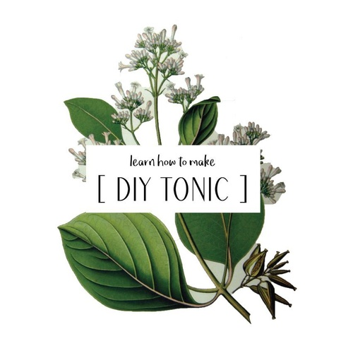 How to Make Your Own DIY Tonic [eBook]